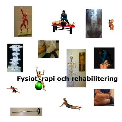 rehabilitering och fysioterapi Malmö