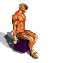 stretching av lateralflexor cervikalt