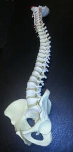 Manipulation sker inte bara av ryggraden.