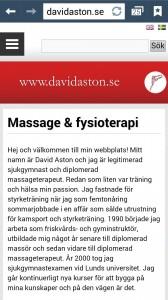 menysystem_davidaston