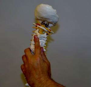 MET handlar till stor del om undersöka och behandla stela partier i ryggraden.