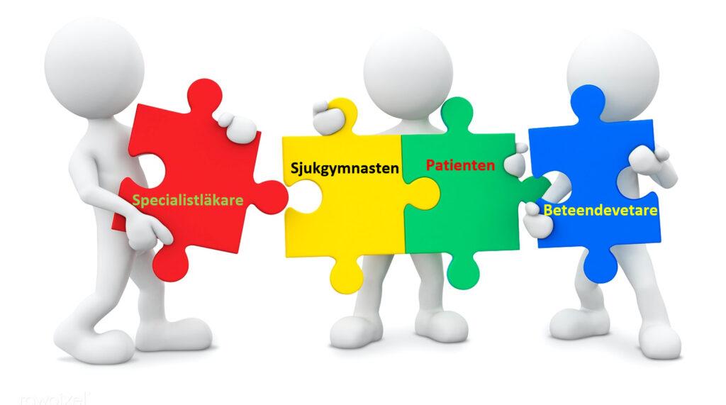 Samarbete inom sjukvård med patient i fokus